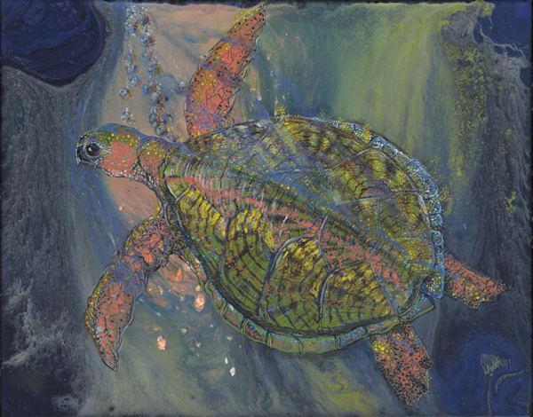Under The Sea Art | lisaabbott