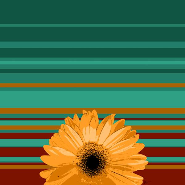 Sunshine Daisy #1 Art | Jon Savage Contemporary Art