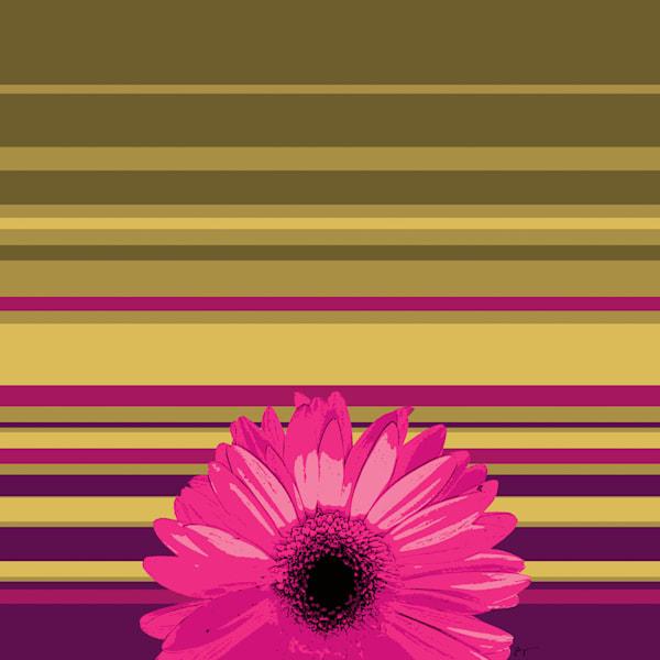 Sunshine Daisy #2 Art | Jon Savage Contemporary Art