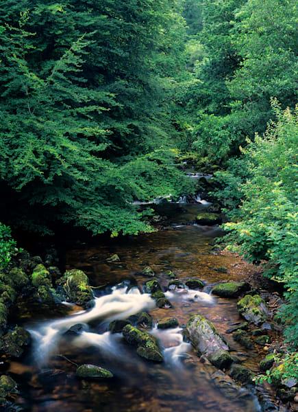 An Ireland Creek Photography Art | Craig Primas Photography