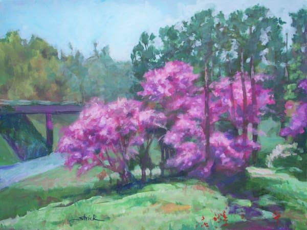 Spring Redbuds Art   Strickly Art