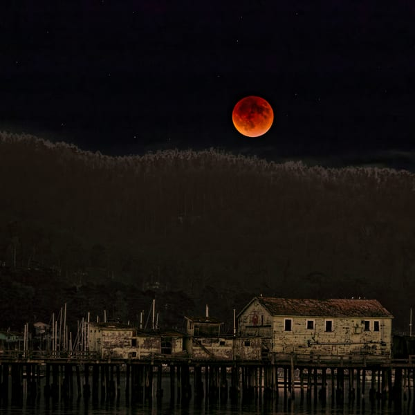 Blood Moon Harbor Photography Art   FocusPro Services, Inc.