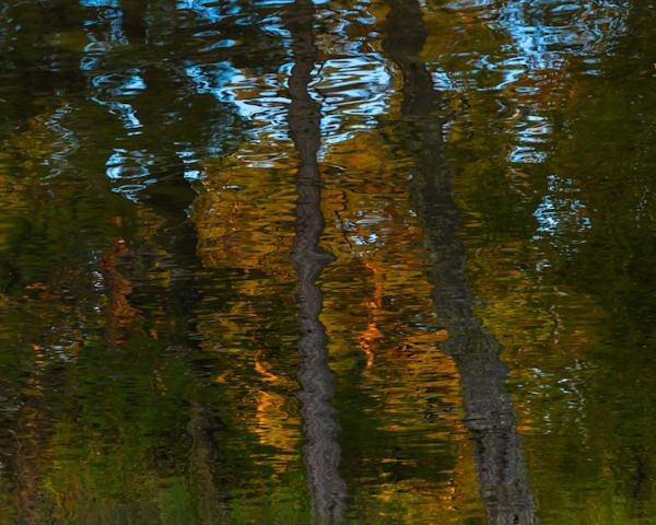 September River Reflection II, by Jeremy Simonson