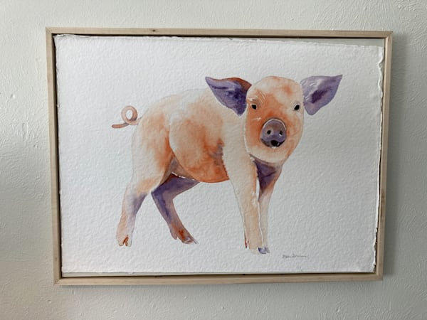 Watercolor painting of a pig
