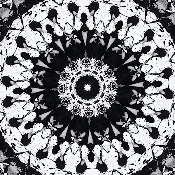 Kaleidoscopics  #198 Art | i Art Collector