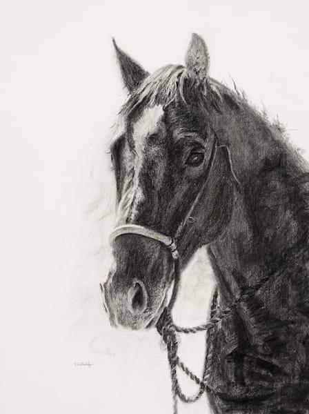 """Raymond Wattenhofer Art Charcoal Drawing """"Intrigued""""."""