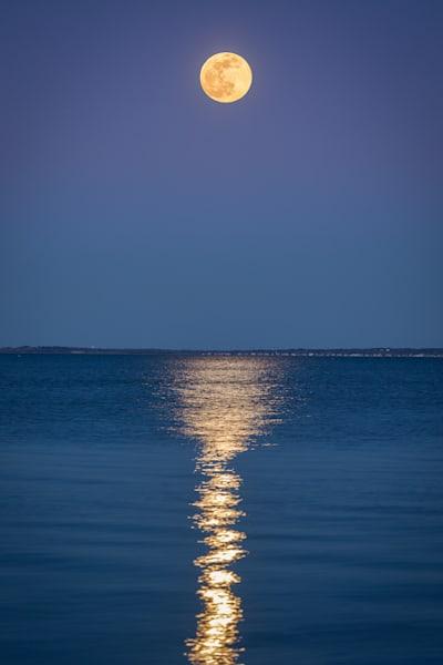 Moonlight Bliss Photography Art | Teaga Photo