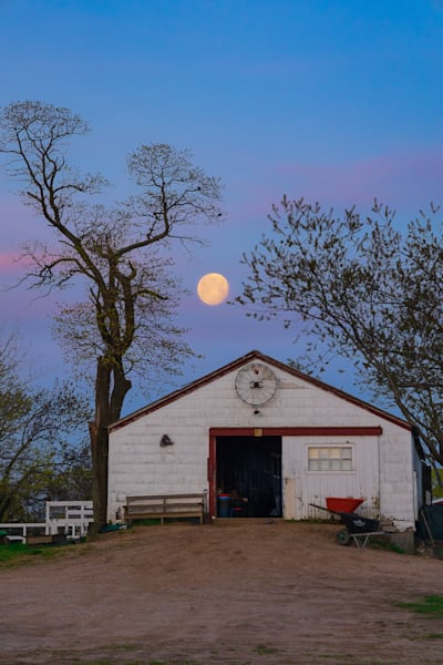 Moon Rescue Photography Art | Teaga Photo