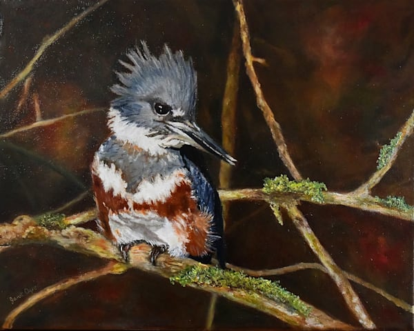 Lucy the Kingfisher