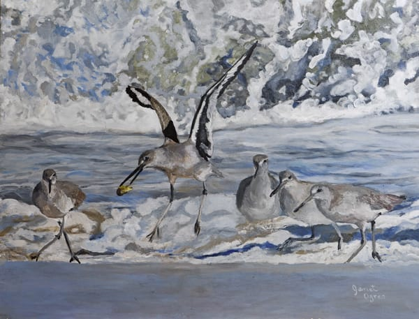 Willets and Waves