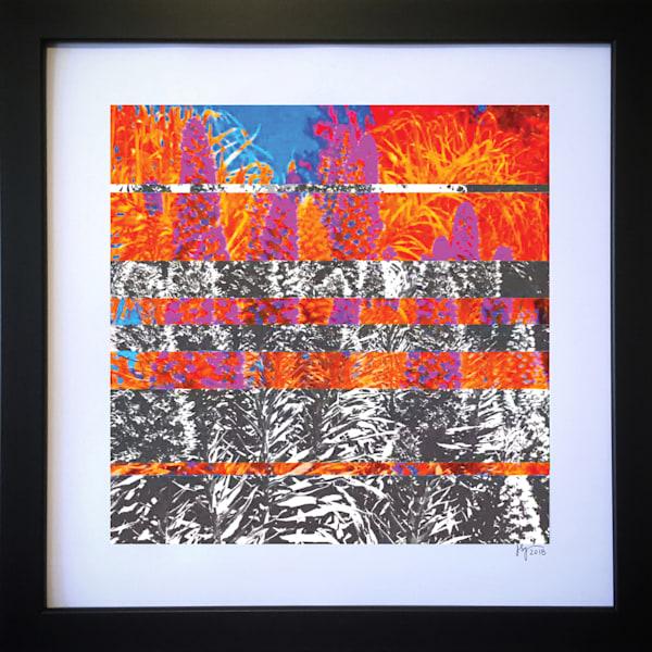 Pride Of Madeira  Art | Jon Savage Contemporary Art