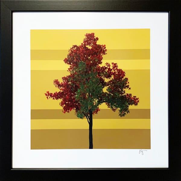 Red Tree Art | Jon Savage Contemporary Art