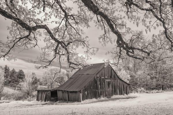 Arkansas Barn in Field 2378