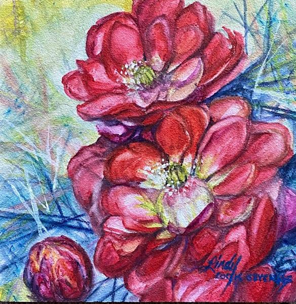 Lindy Cook Severns Art | Cactus Roses, original watercolor