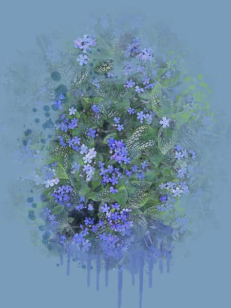 Peter's Forget Me Nots  Art | Art from the Soul