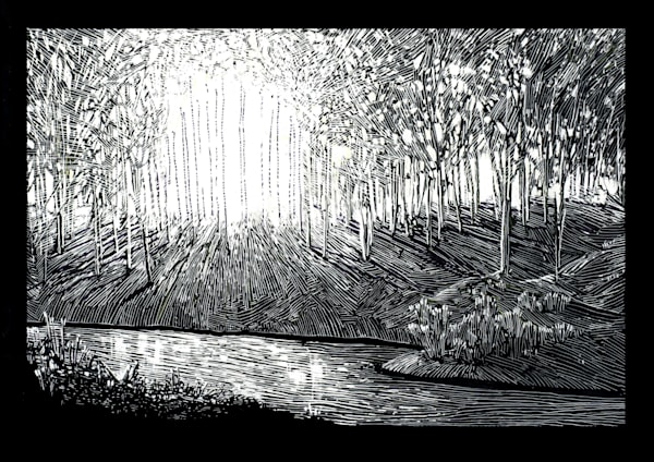 A Mind Awake  Art | Andre Junget Illustration LLC