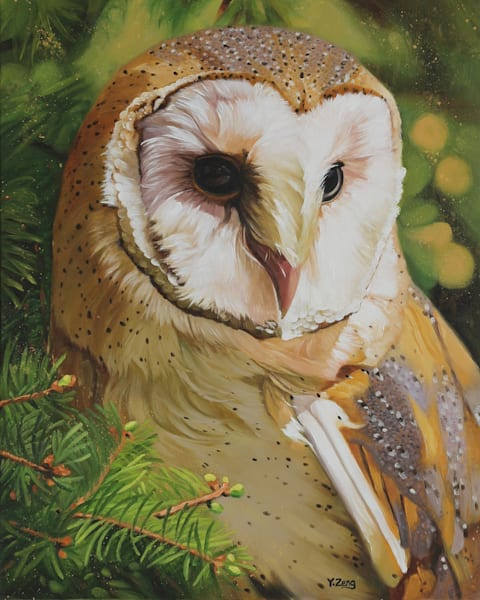 Barn Owl by Yue Zeng a Chinese American painter.