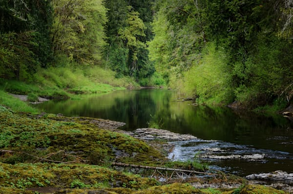 Chehalis River, Rainbow Falls State Park, Washington, 2021