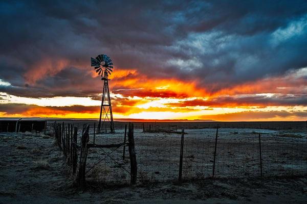 Windy Sunstar 2 Photography Art   Cerca Trova Photography