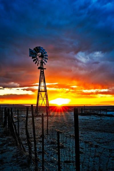 Windy  Sunstar Photography Art | Cerca Trova Photography