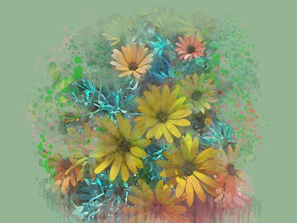 Osteospermum Insanity Art | Art from the Soul