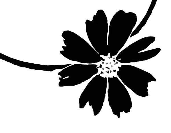 Last Bloom