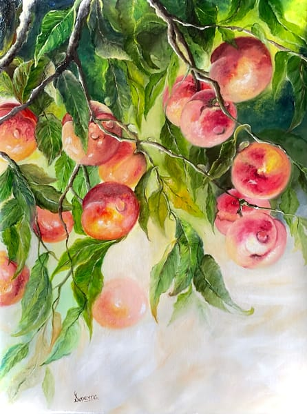 Peaches by Suparna Sain, an Artist from India
