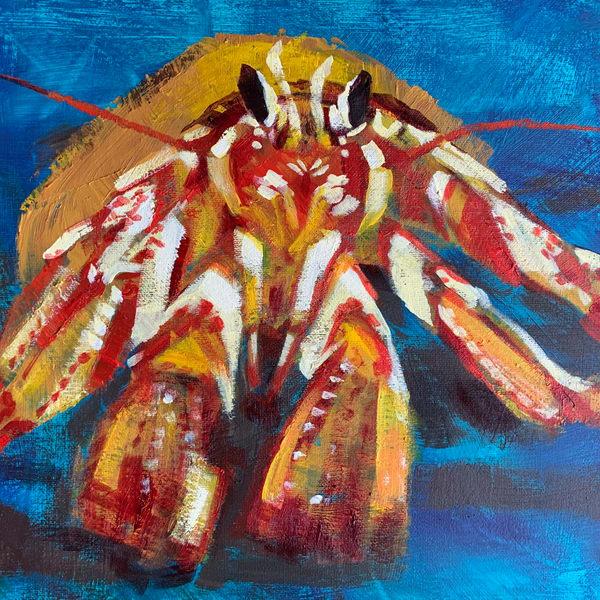 Hermit Crab (Square) Art   susanclare