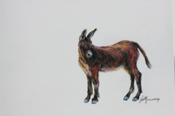 Lindy Cook Severns Art | Wild and Free, print