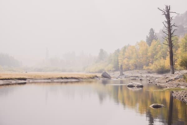 Fall Splendor - digital oil painting of fall in California photograph print