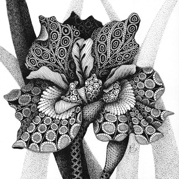 "Butterfly Bloom Art | Kristin Moger ""Seriously Fun Art"""