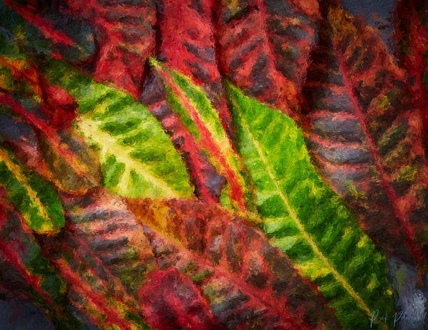 Hawaii Croton Art | Rick Peterson Studio