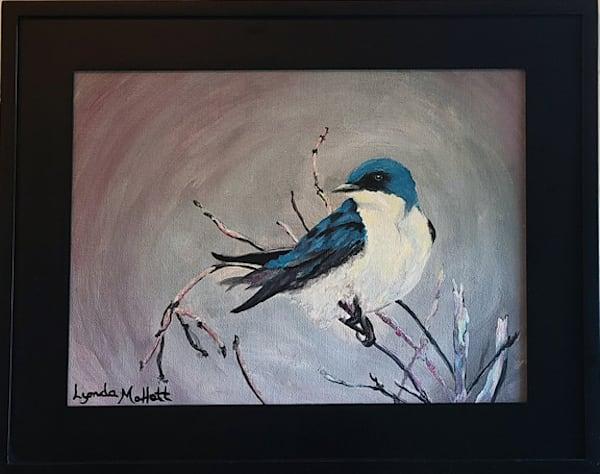 Tree Swallow In The Marsh Art | Lynda Moffatt Fine Arts