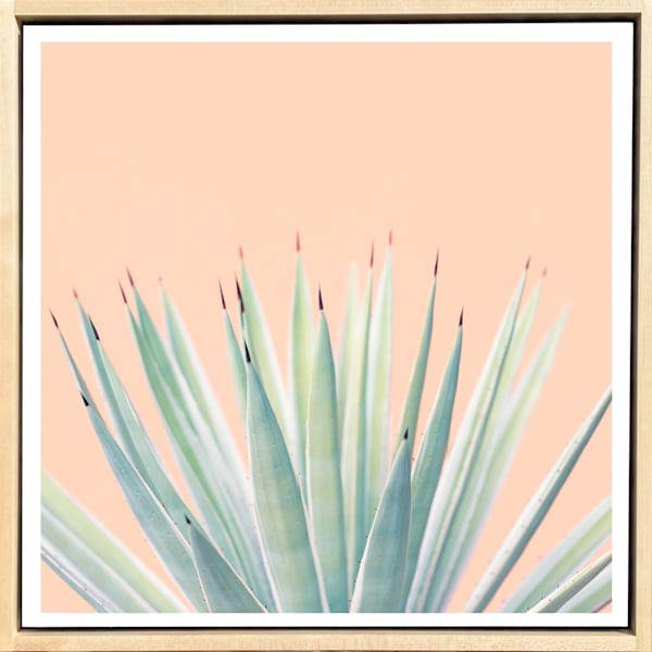 Tropical Plant Pastels #1 Limited Edition