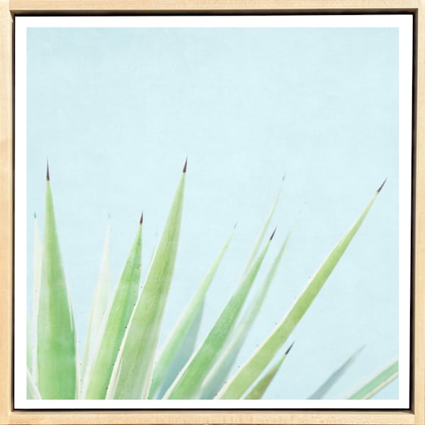 Tropical Plant Pastels #5 Limited Edition Print