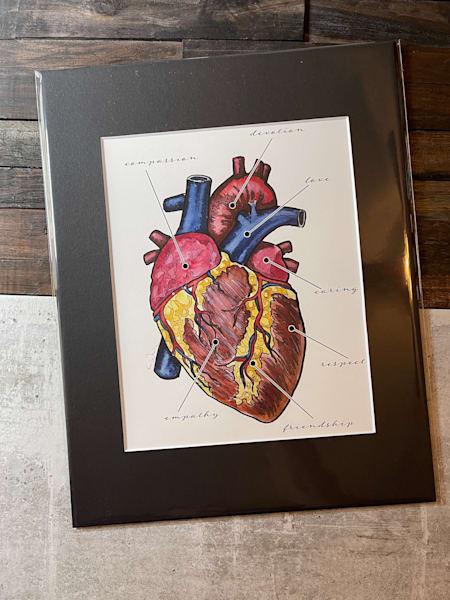 Anatomy Of The Heart Print   Water+Ink Studios