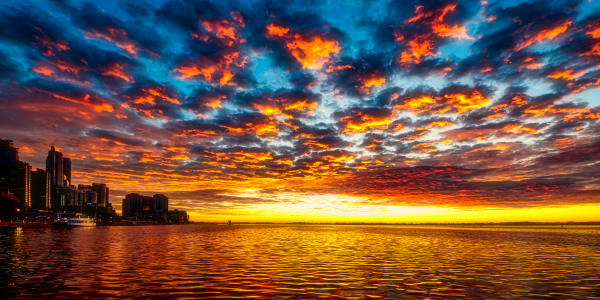 Golden Sunrise On The Toronto Waterfront Photography Art   Rick Vyrostko Photography