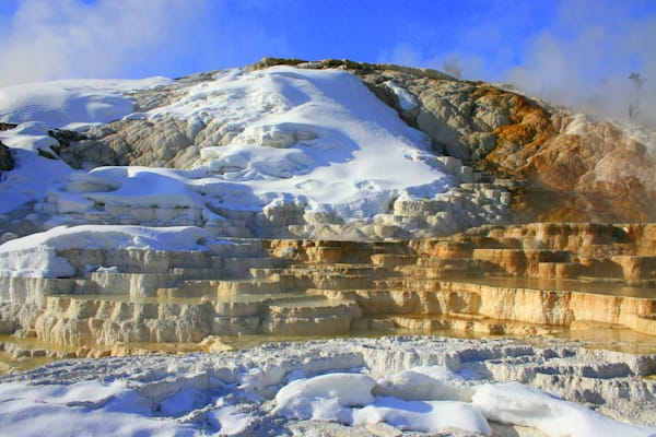Mammoth Hot Springs, April Morning, Yellowstone National Park Photography Art | Lauramarlandphoto.com