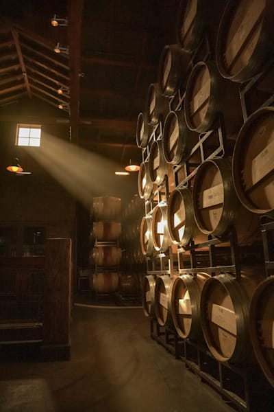 Sun shines into a wine barrel room