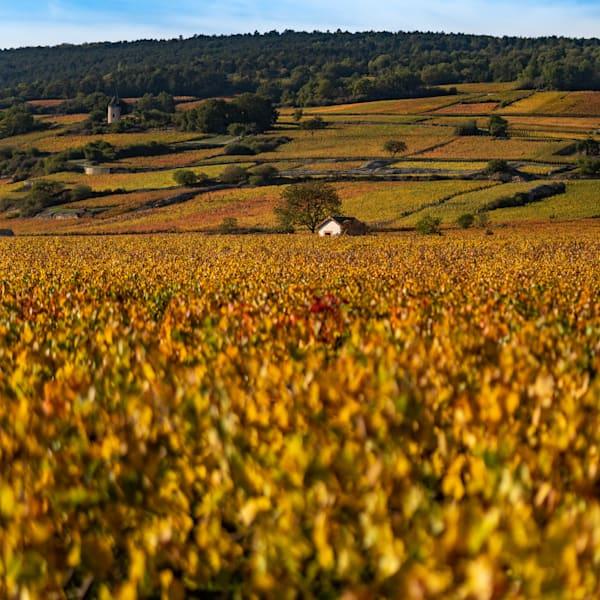 Autumn in Burgundy, France
