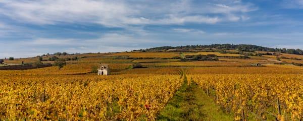 Burgundy France Panoramic