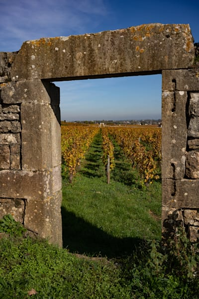 Old stone archway in French vineyard