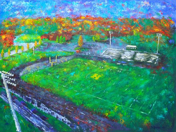 The Stadium Art | S Pominville