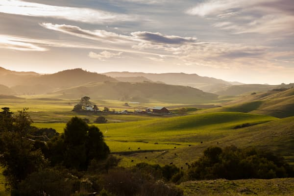 Pastoral landscape in Marin County