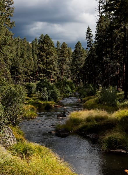 East Fork Black River, Arizona Photography Art | Kendall Photography & Fine Art