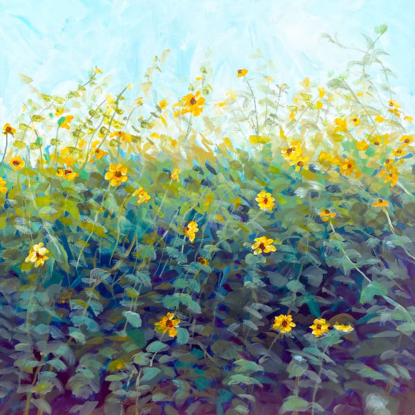 Sunflower Patch 250 Art   Charles Wallis
