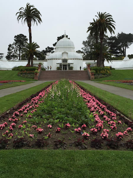San Francisco Conservatory Of Flowers Photography Art | Kathleen Messmer Photography
