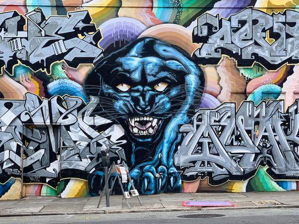 Graffiti Leopard Photography Art | Kathleen Messmer Photography