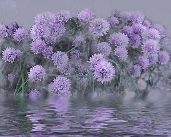 Onion Chive Planter After The Storm  Art | Art from the Soul