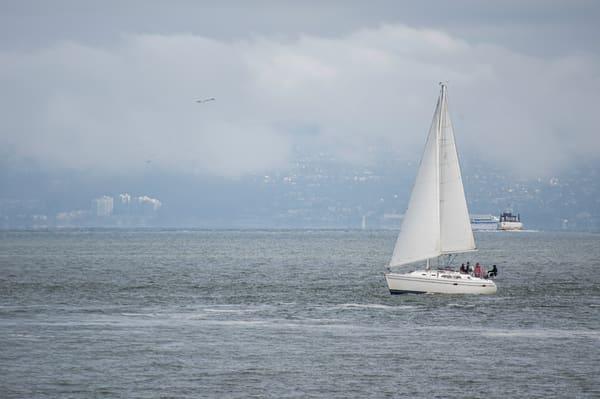 Sailing The Bay 2 Photography Art | Kathleen Messmer Photography